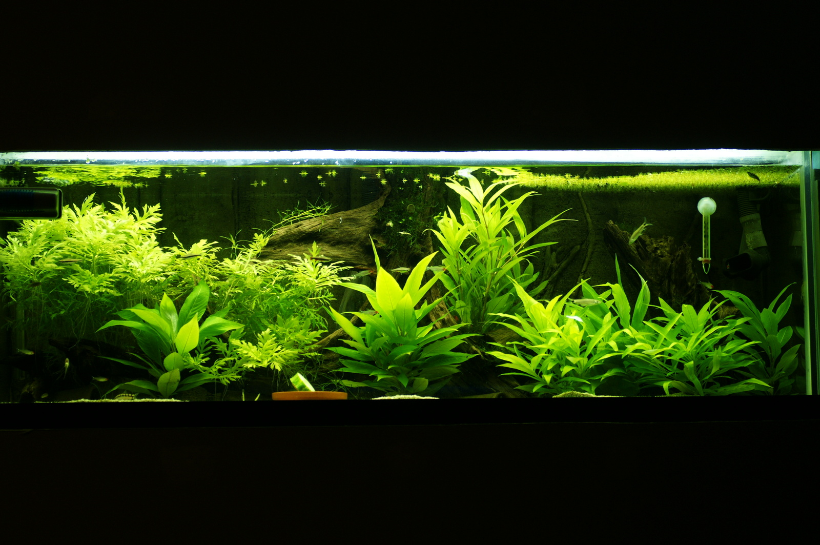 60G update | by Sean Mills