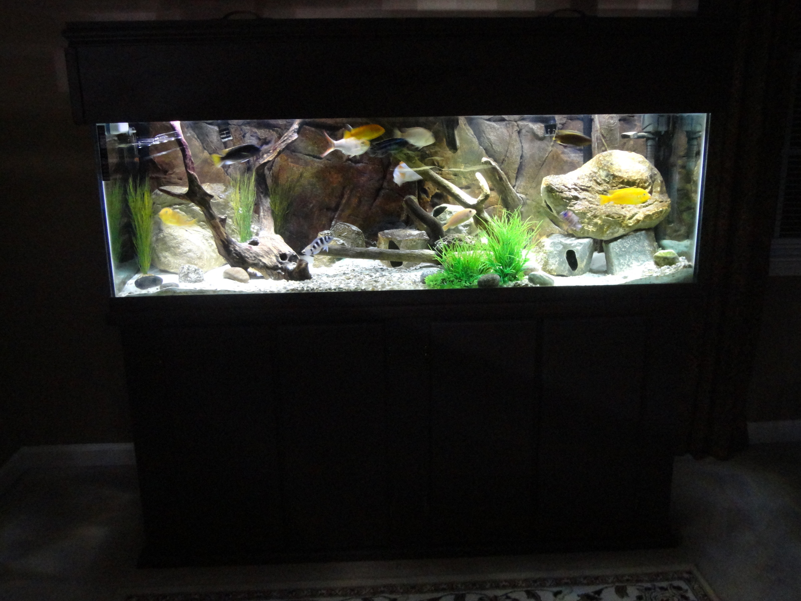 100gal Update | by rich hewitt
