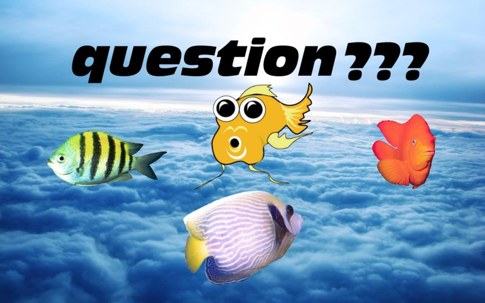 question again :) | by Sharrylynn Robinson Thompson