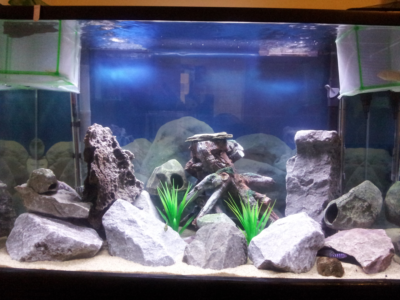 my new fry tank. still under constrution bro!!... | by carlos duran