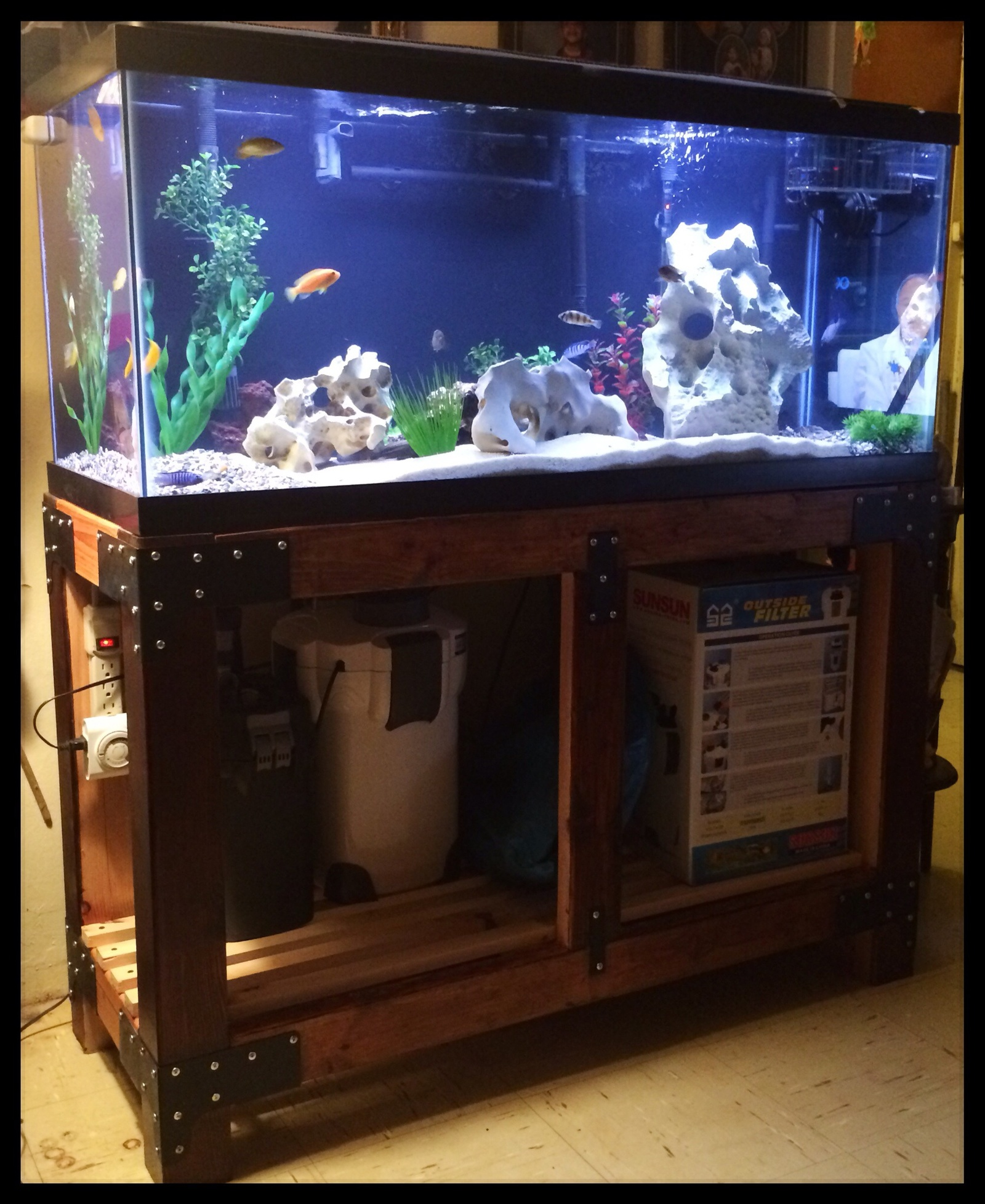 The full aquarium 75 gallon upgrade | by Juan P