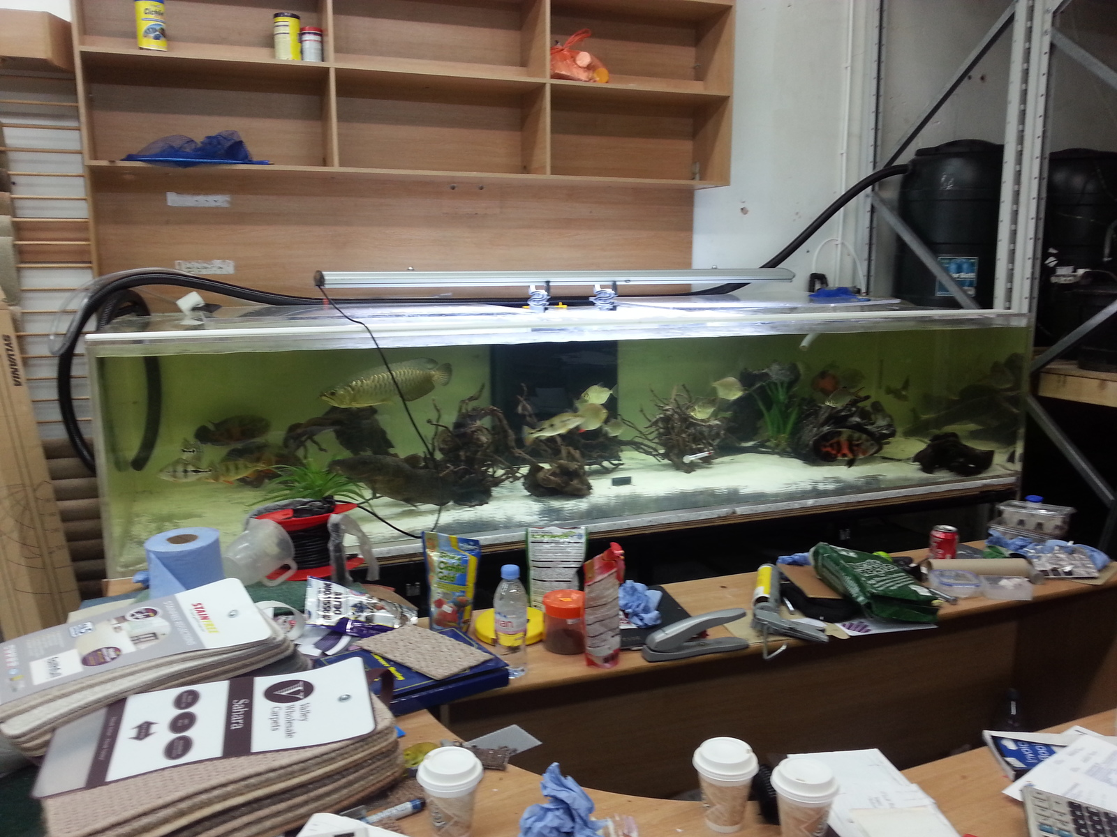 10ft monster tank | by asim n