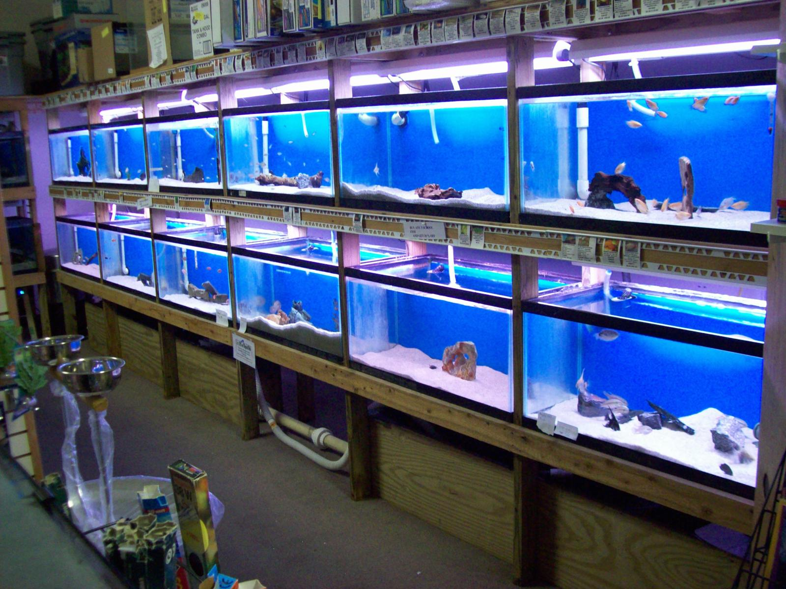 500 gallon freshwater system | by Justin Deans