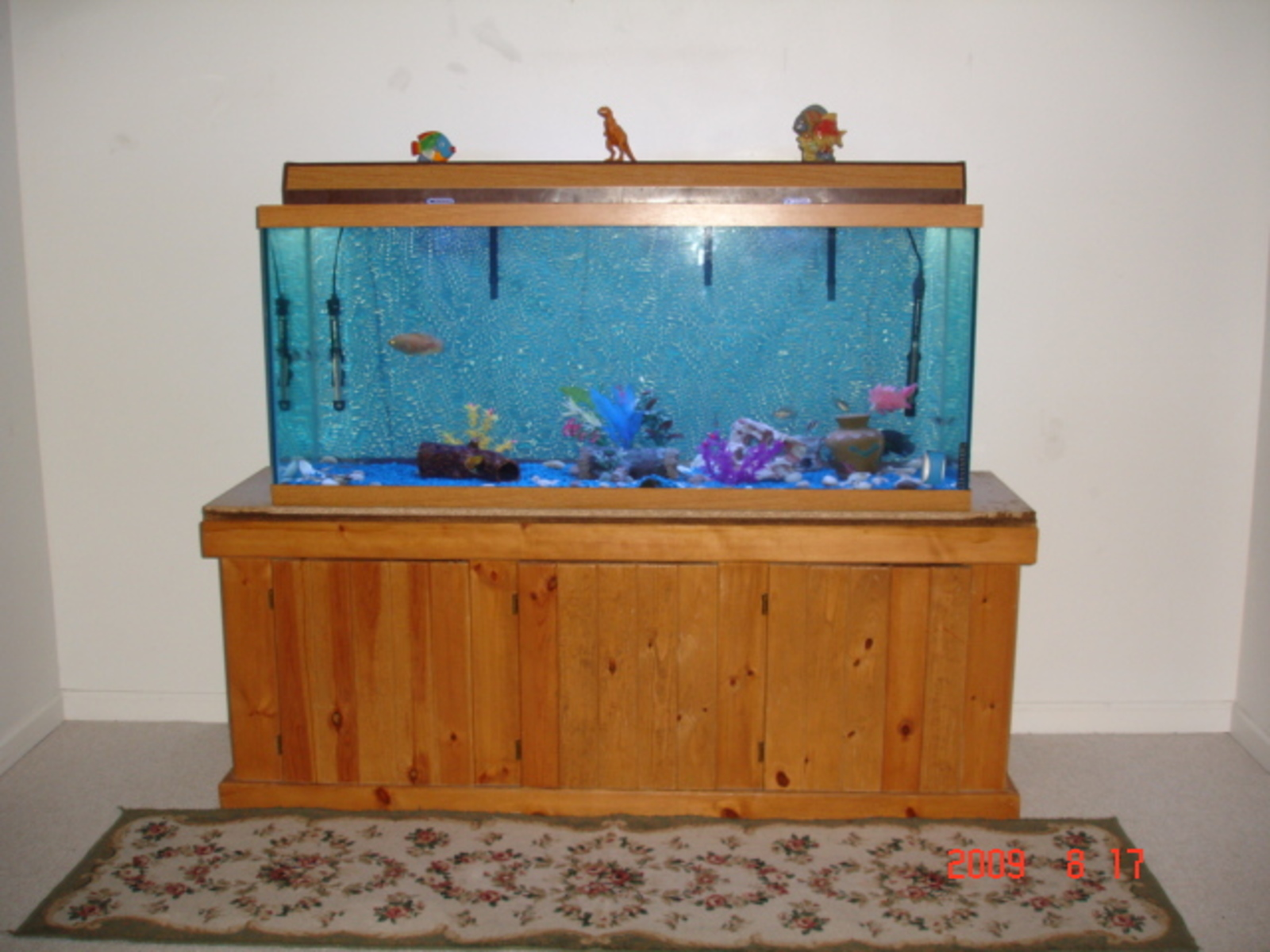 120 Gal. Aquarium====> fixed and running for 4 Days now i!! | by Vu Q