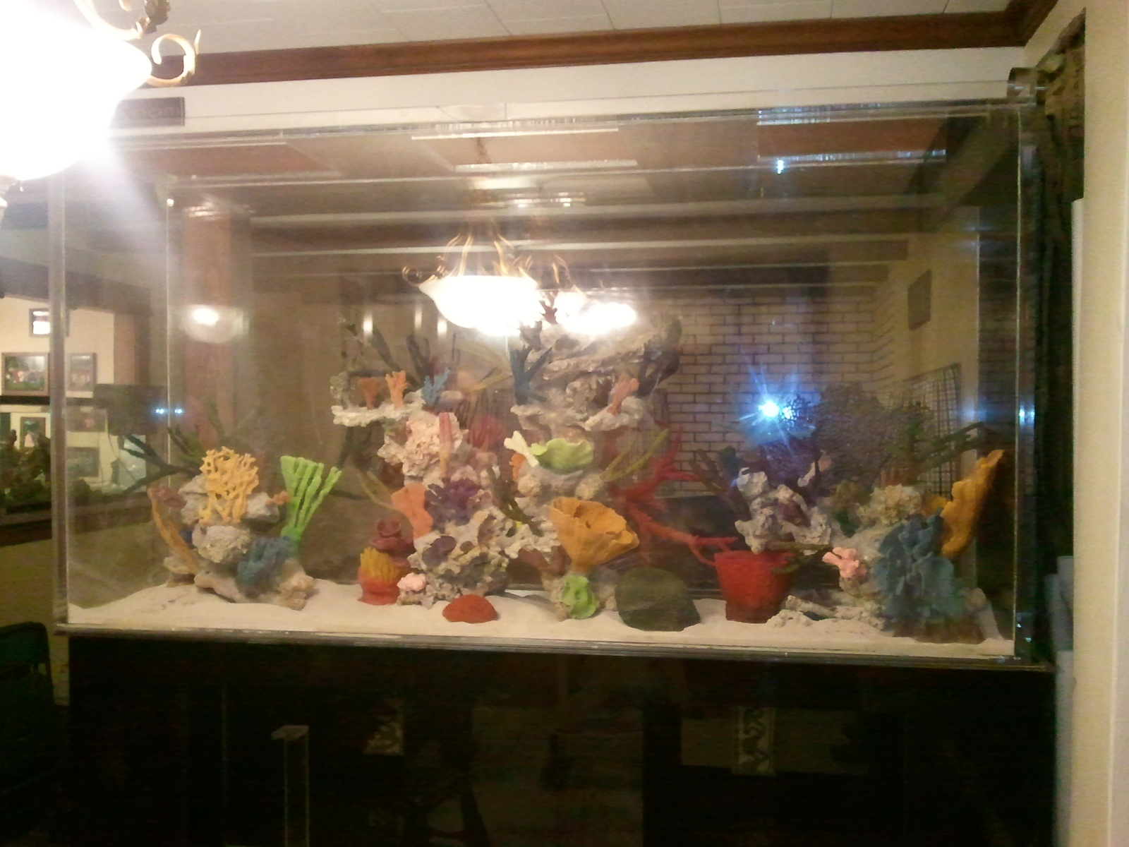 Sorry for the glare, this is my uncles 500 gallon on its stand | by curtis miller