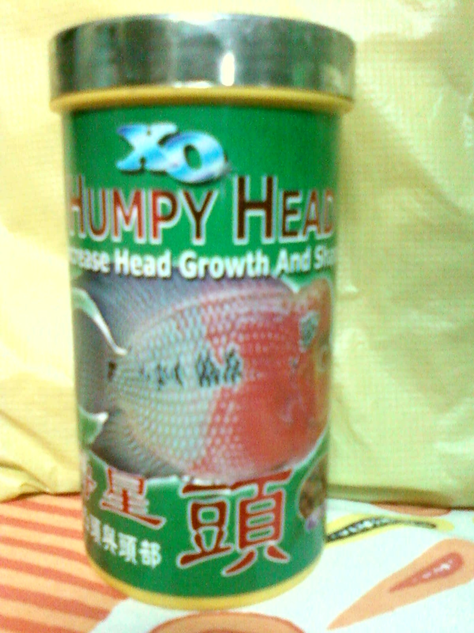 XO HUMPY HEAD for my flowerhorn | by Tirthabrata Panja