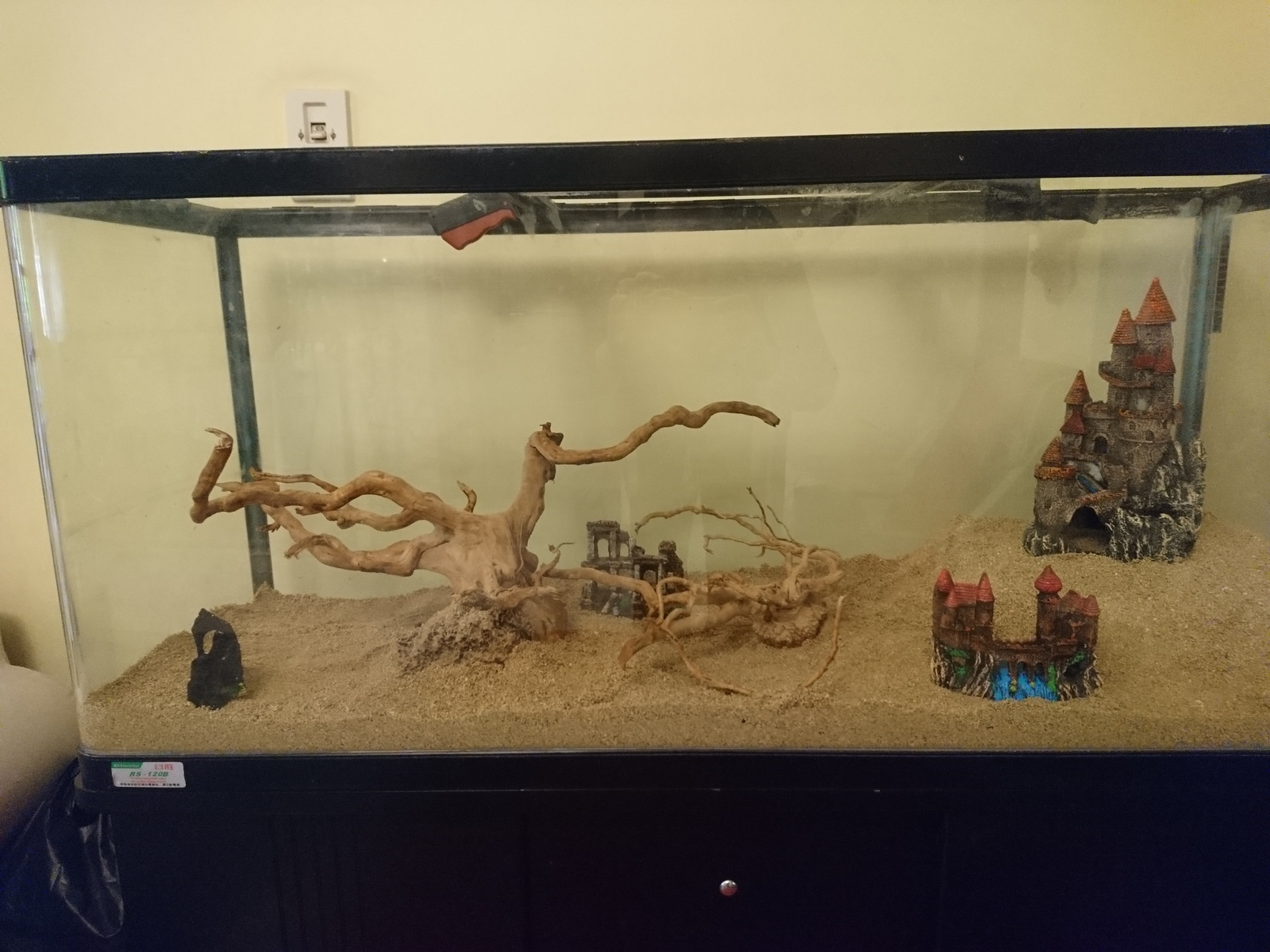 Setup for Malawi Cichlids  | by Fady El-Bahrawy