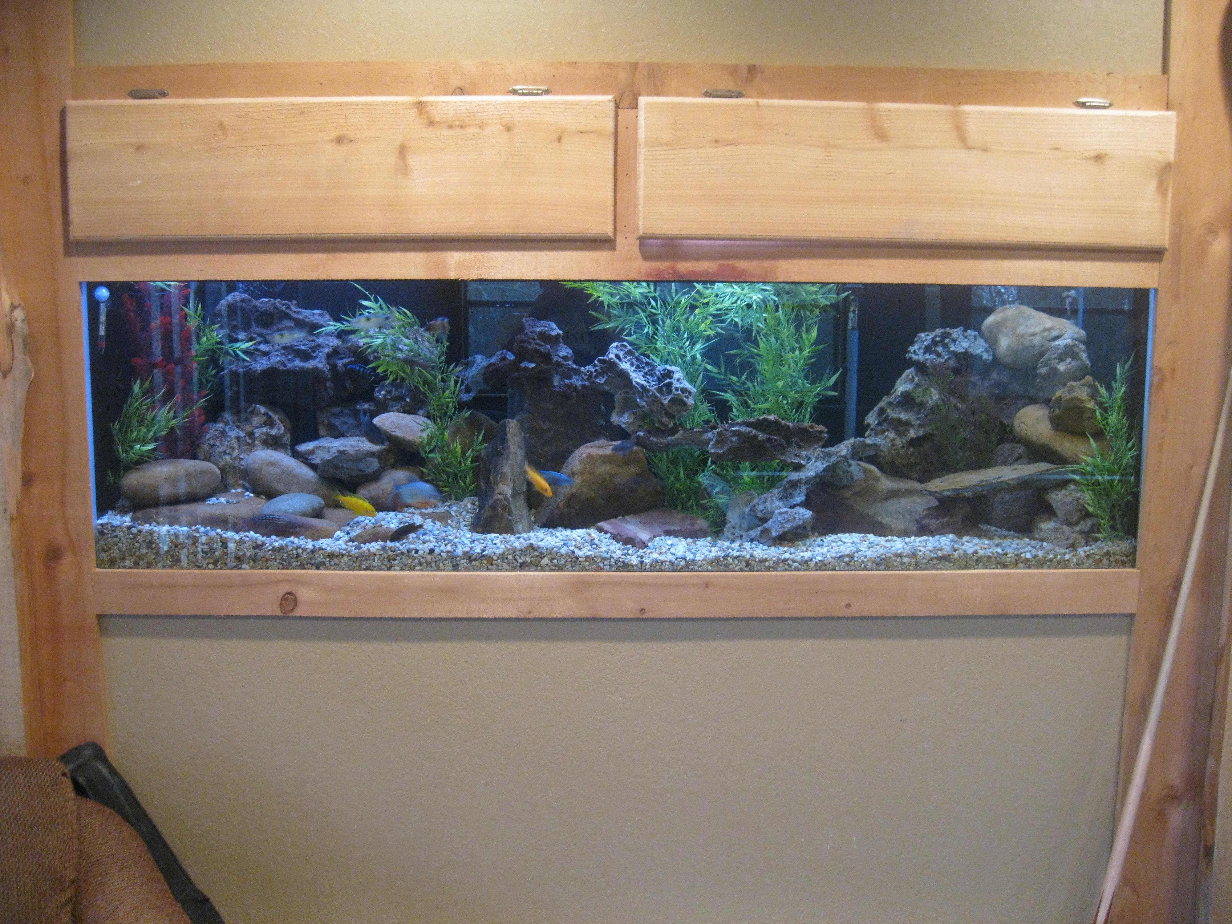 125 Gallon Fish Tank Related Keywords & Suggestions - 125 Gallon Fish ...