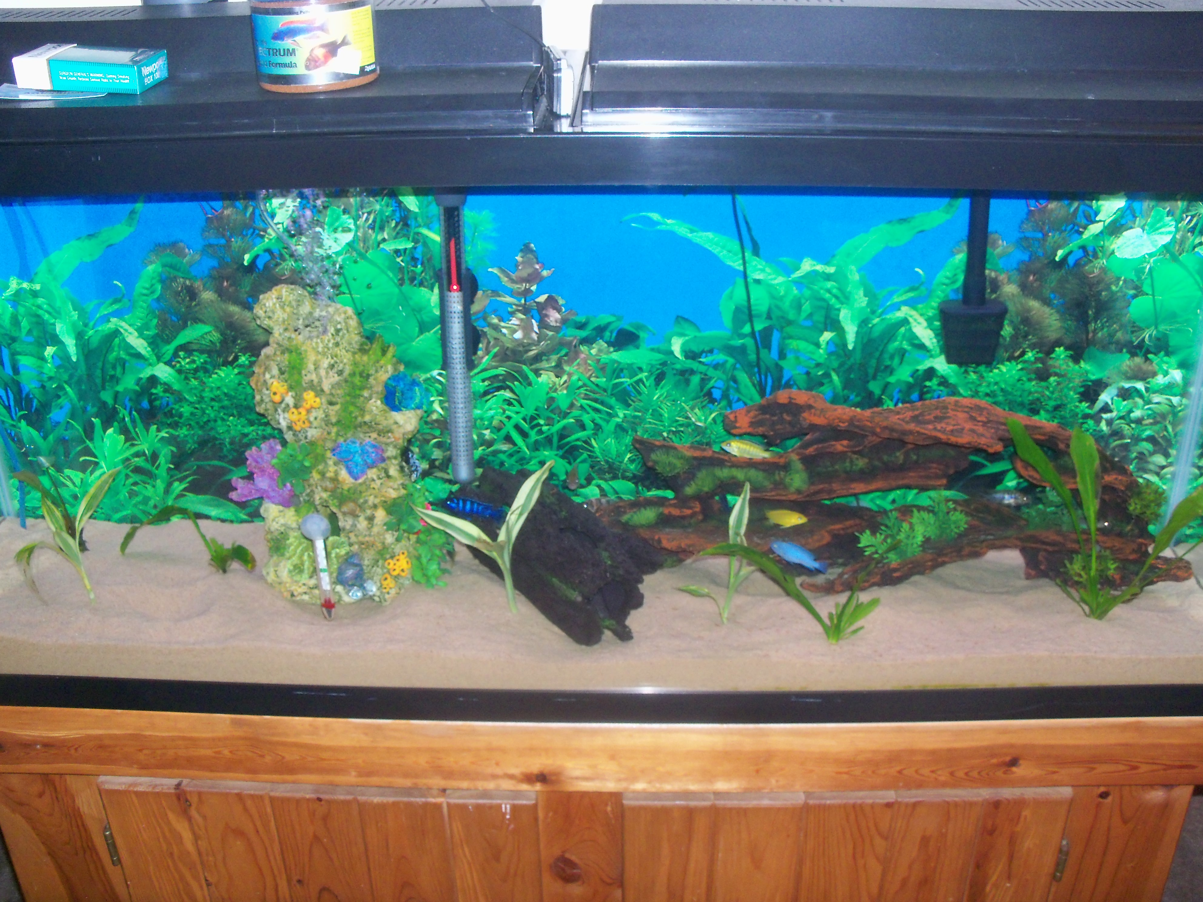 110 gallon aquarium glass fish reptile tank wholesale for 100 gallon fish tanks