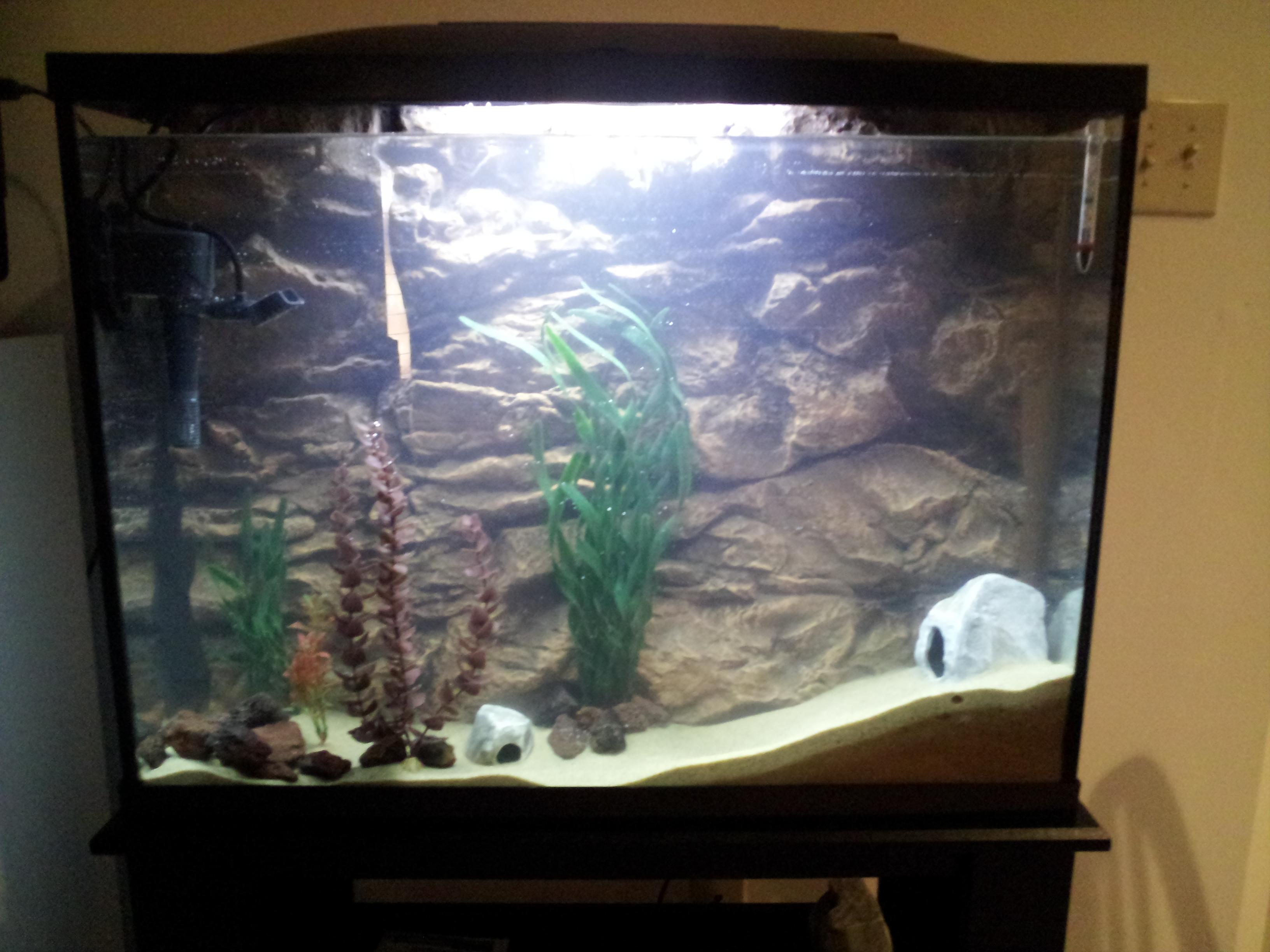 Marineland 37 gallon aquarium 1000 aquarium ideas for 37 gallon fish tank