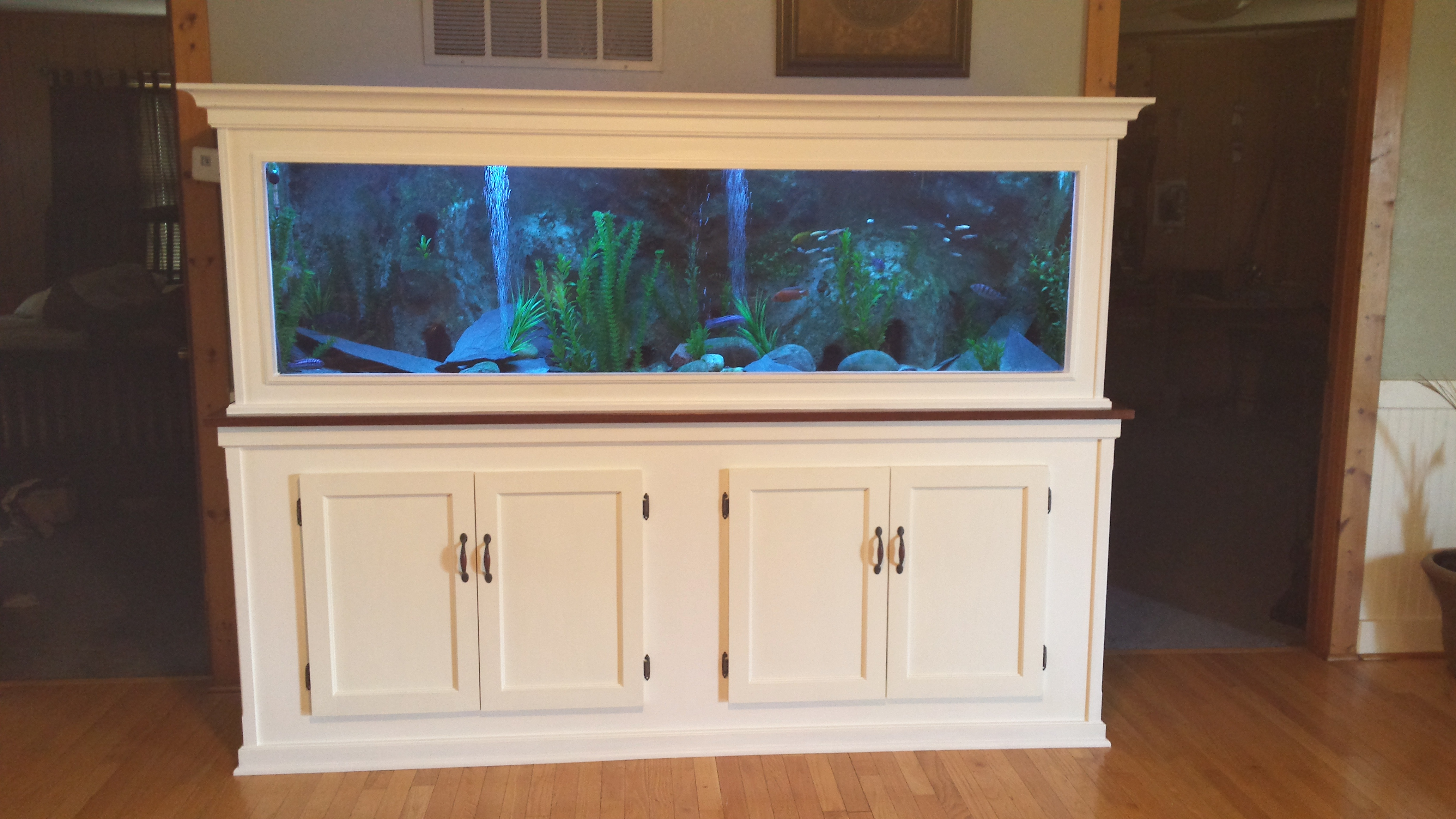 209 gallon custom plywood tank with 3d back drop for Plywood fish tank