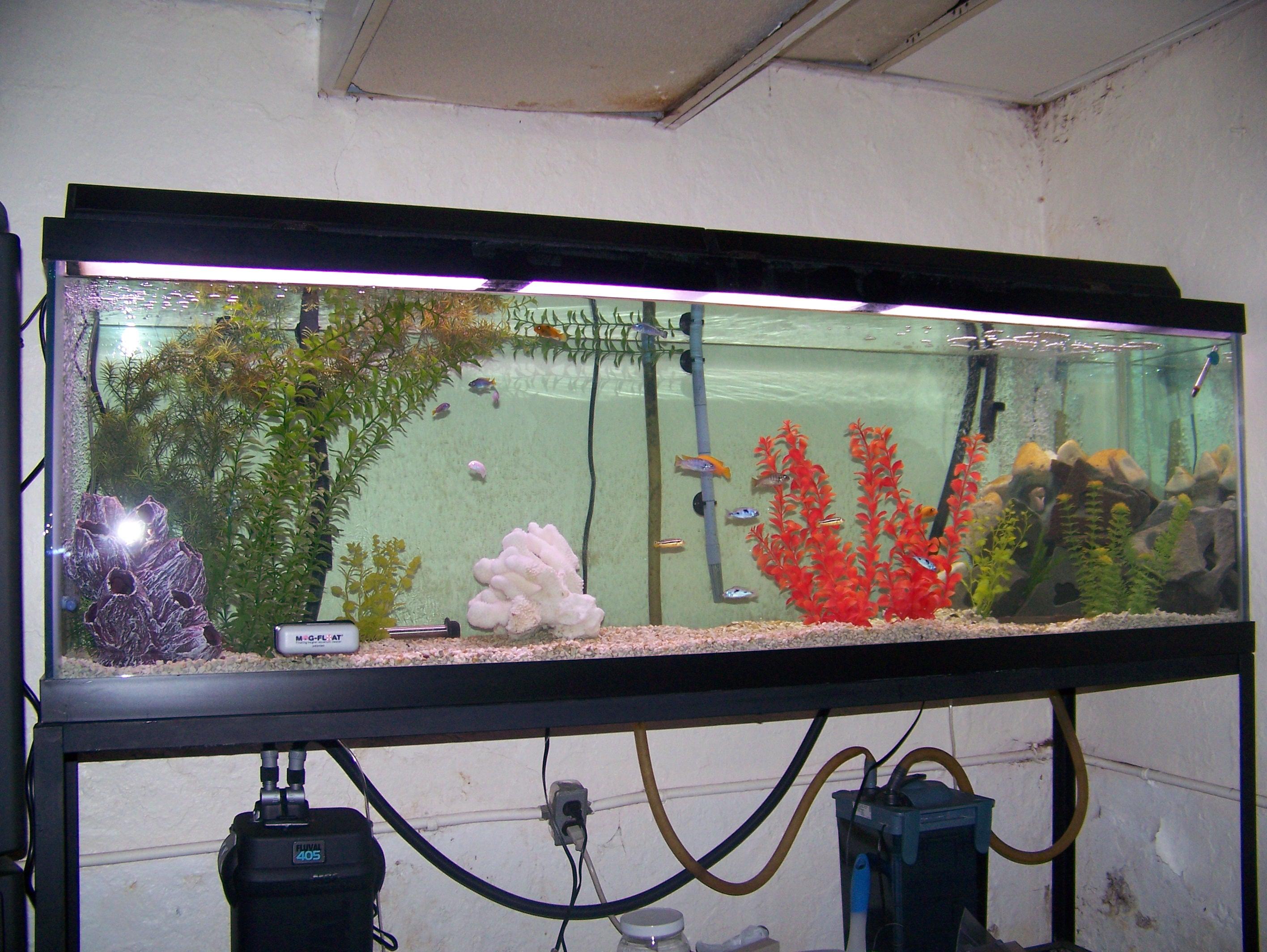 125 gallon aquarium stand plans 180 fish tank stand diy for 125 gallon fish tank stand