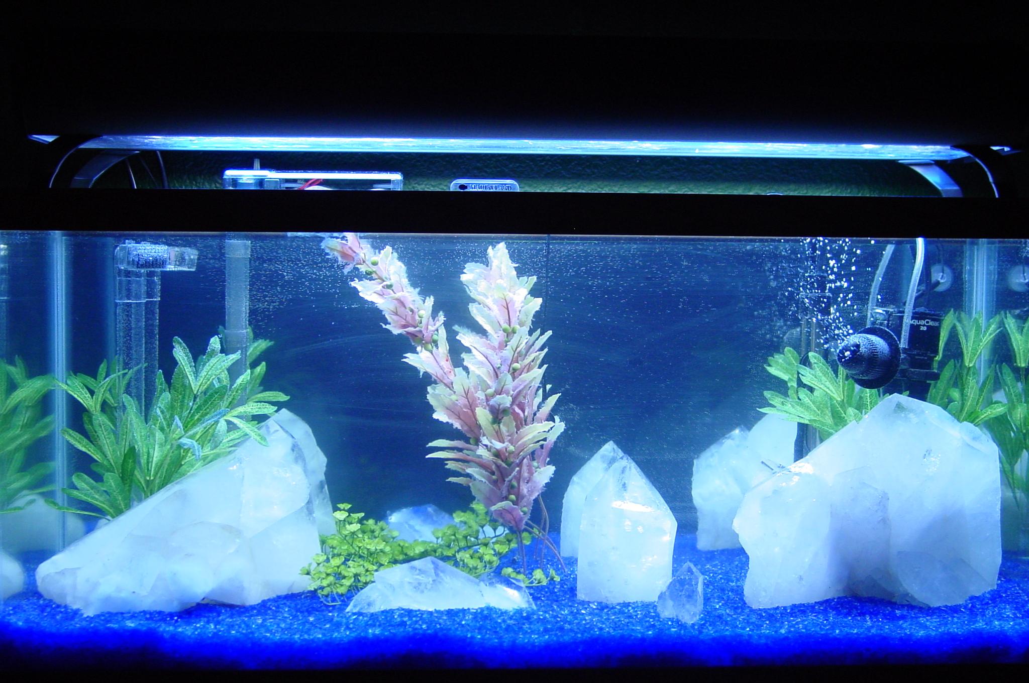 Tank examples ice tank still the same for Fish tank ice method