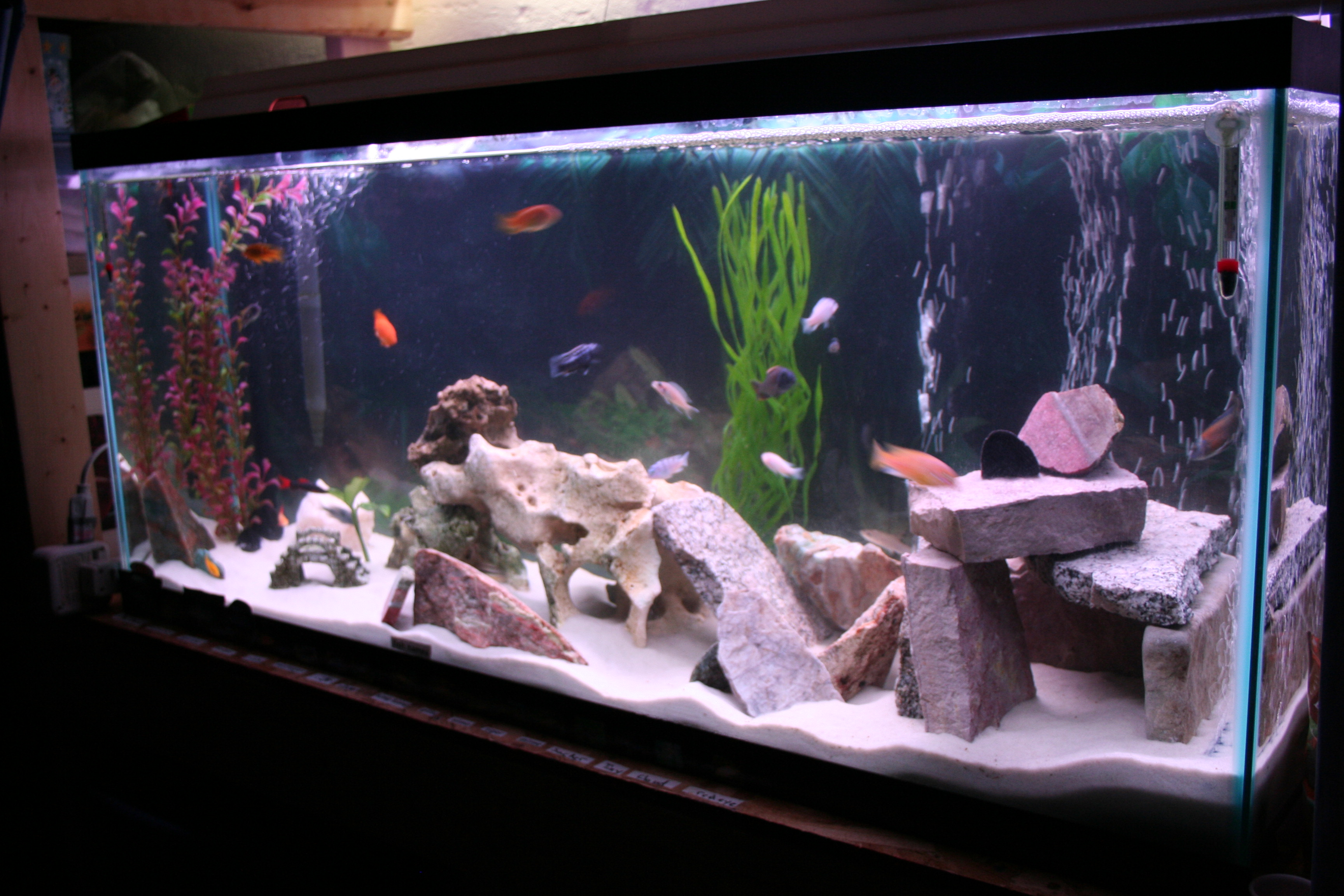 Fish tank decorations for cichlids aquarium rock cave for Aquarium house decoration