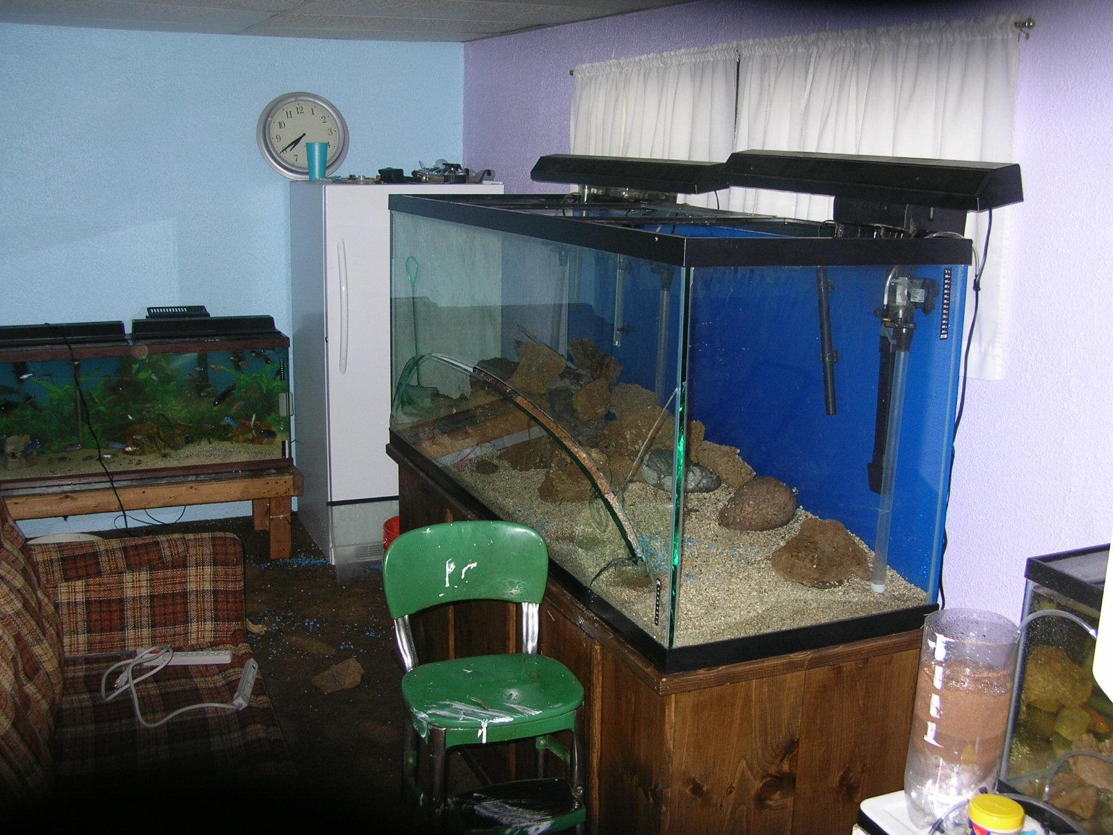 Burst tank 220 gallon for joe and christie for 220 gallon fish tank