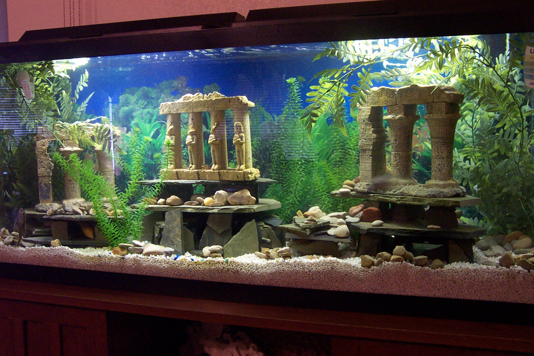 Tank examples slate caves for Fish tank caves