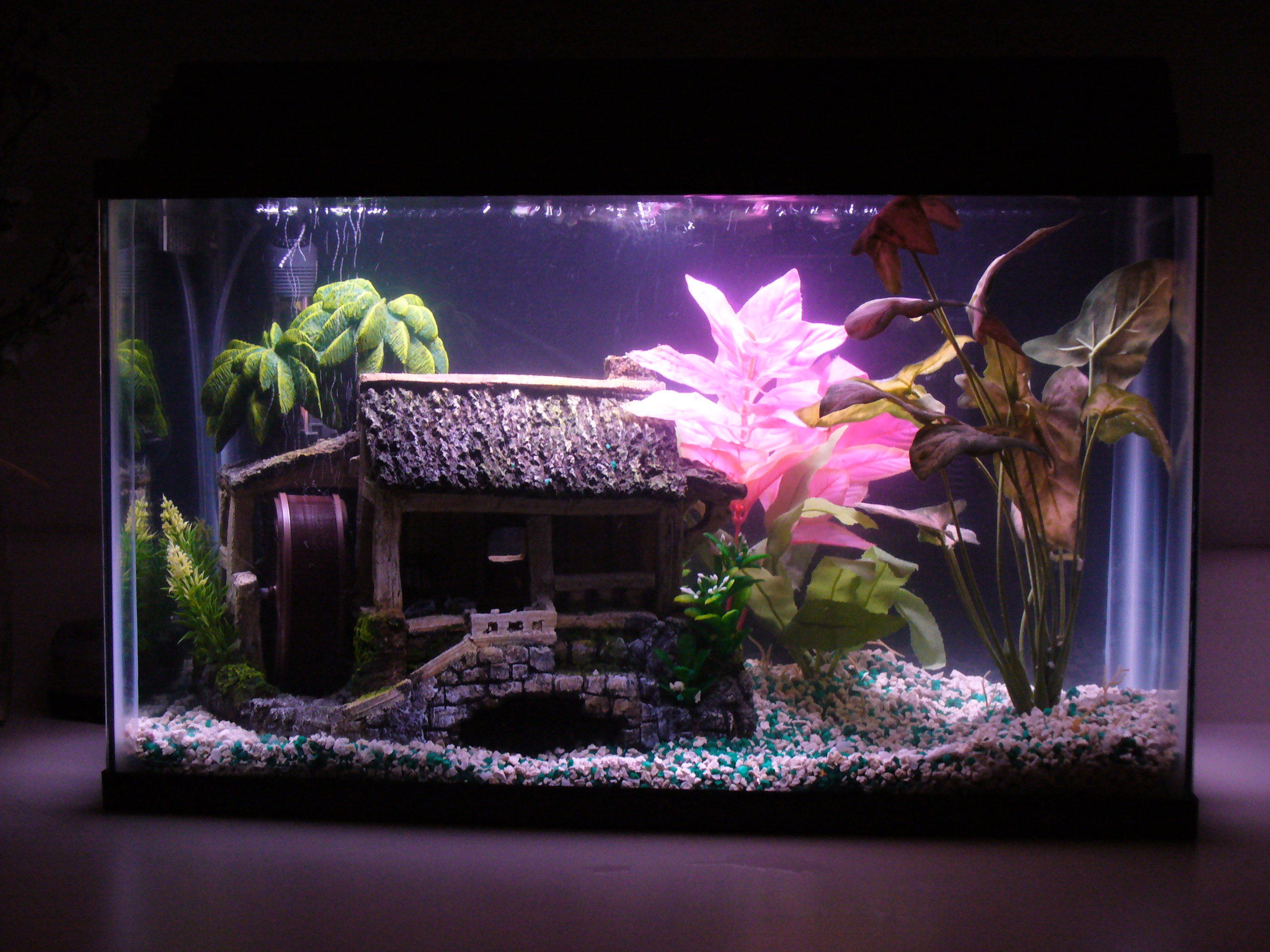 Freshwater fish aquarium accessories - Fish Tank Idea
