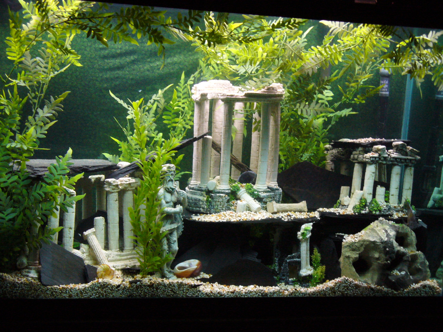 Tank examples 110gallon atlantis themed hey for African cichlid tank decoration