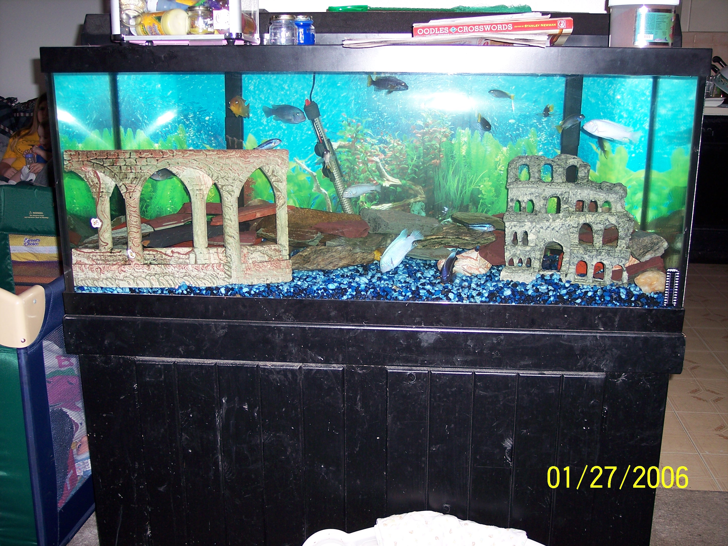 Fish tank decorations 75 gallon dimensions 2017 fish for Used fish tanks for sale many sizes