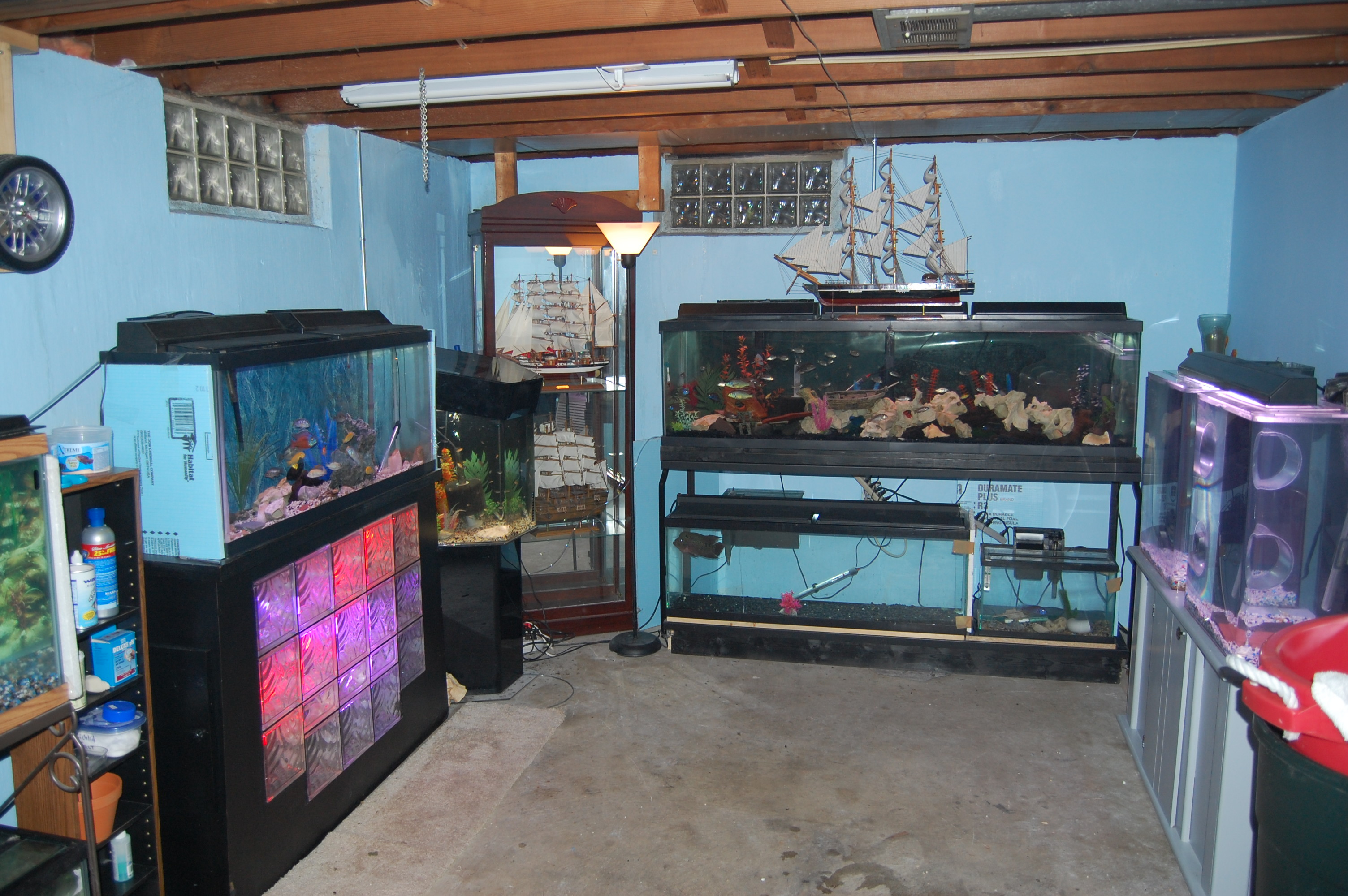 Fish Room | 3008 x 2000 · 1229 kB · jpeg