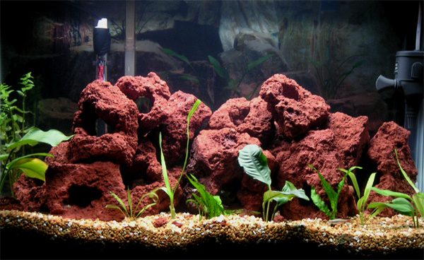 Tank examples my first planted malawi tank for Lava rock fish tank