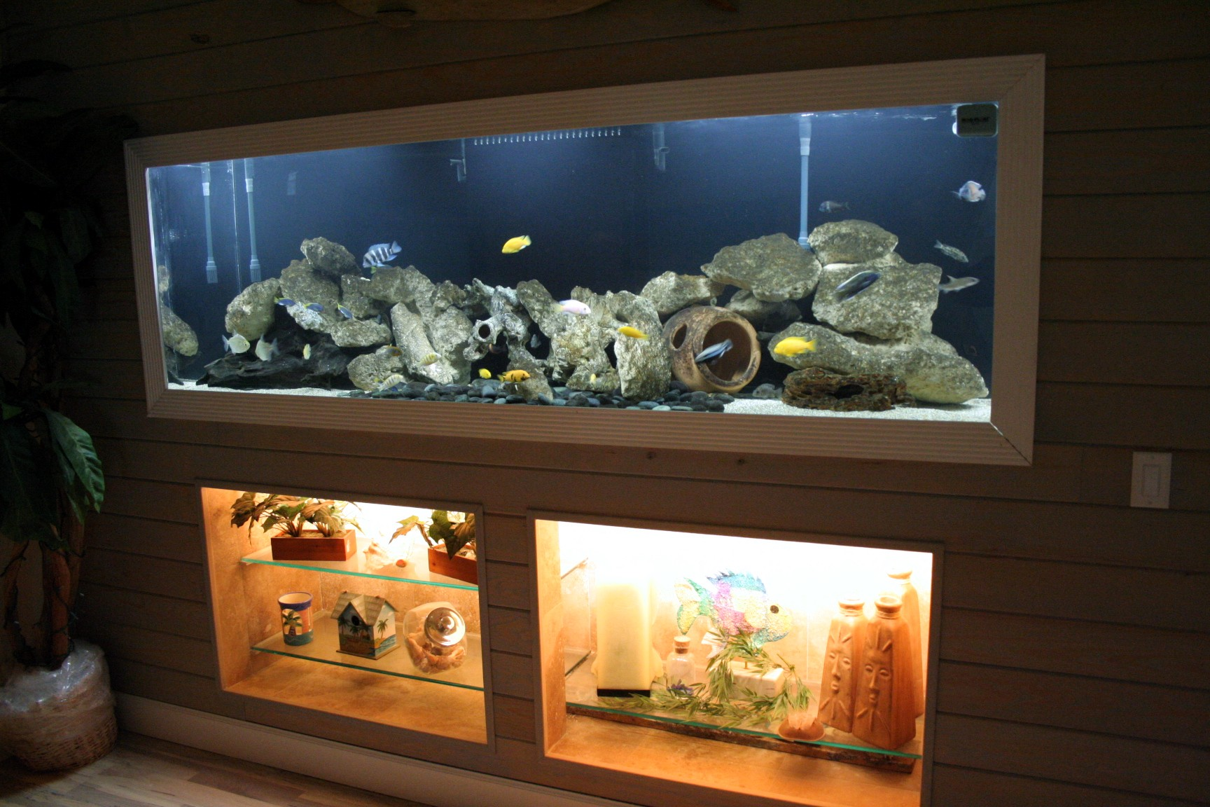 Help me arrange my living room. Fish Tank in living room, trashy? | Page 2 | TigerDroppings.com