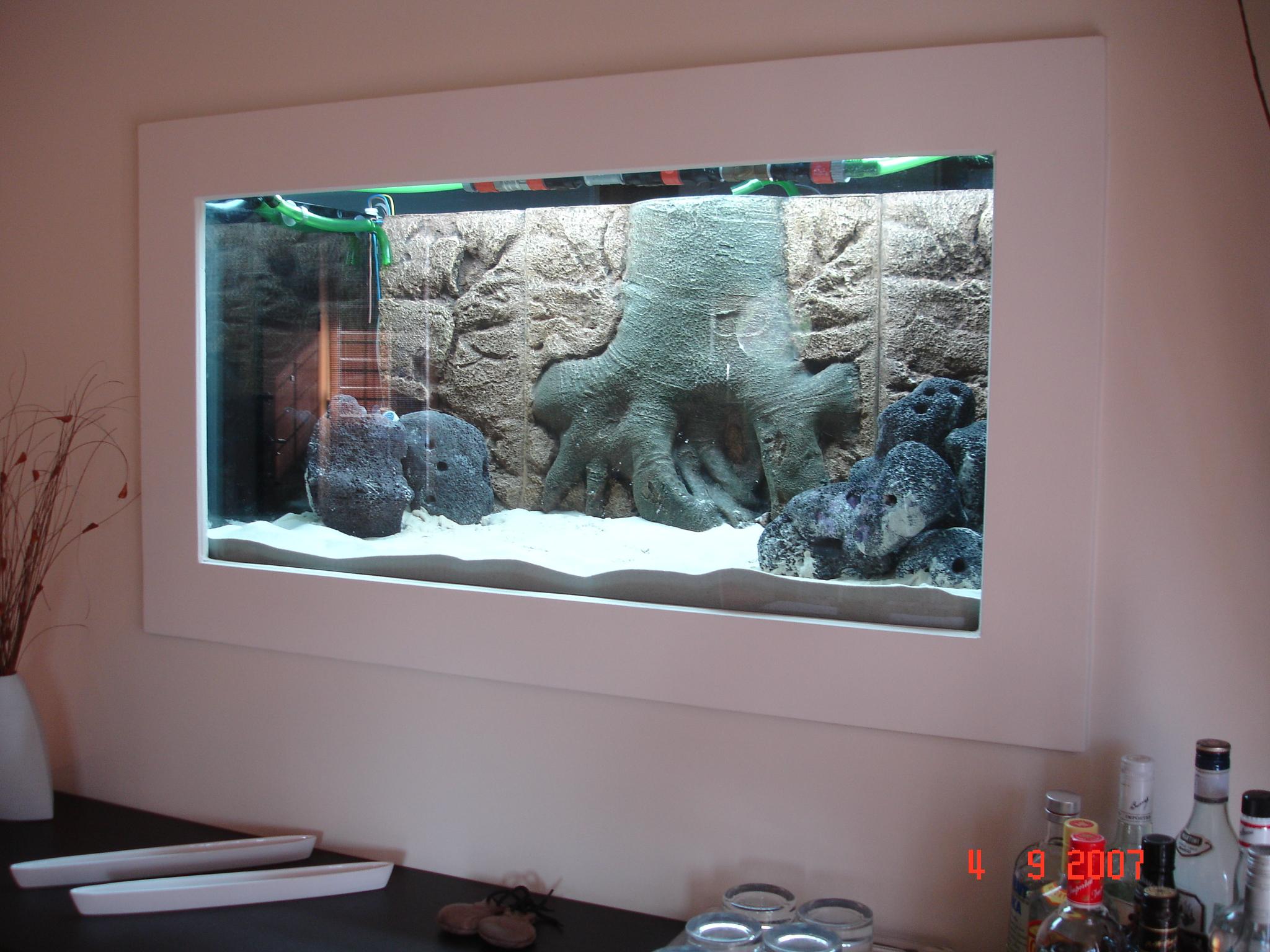 how to set up a cichlid breeding tank