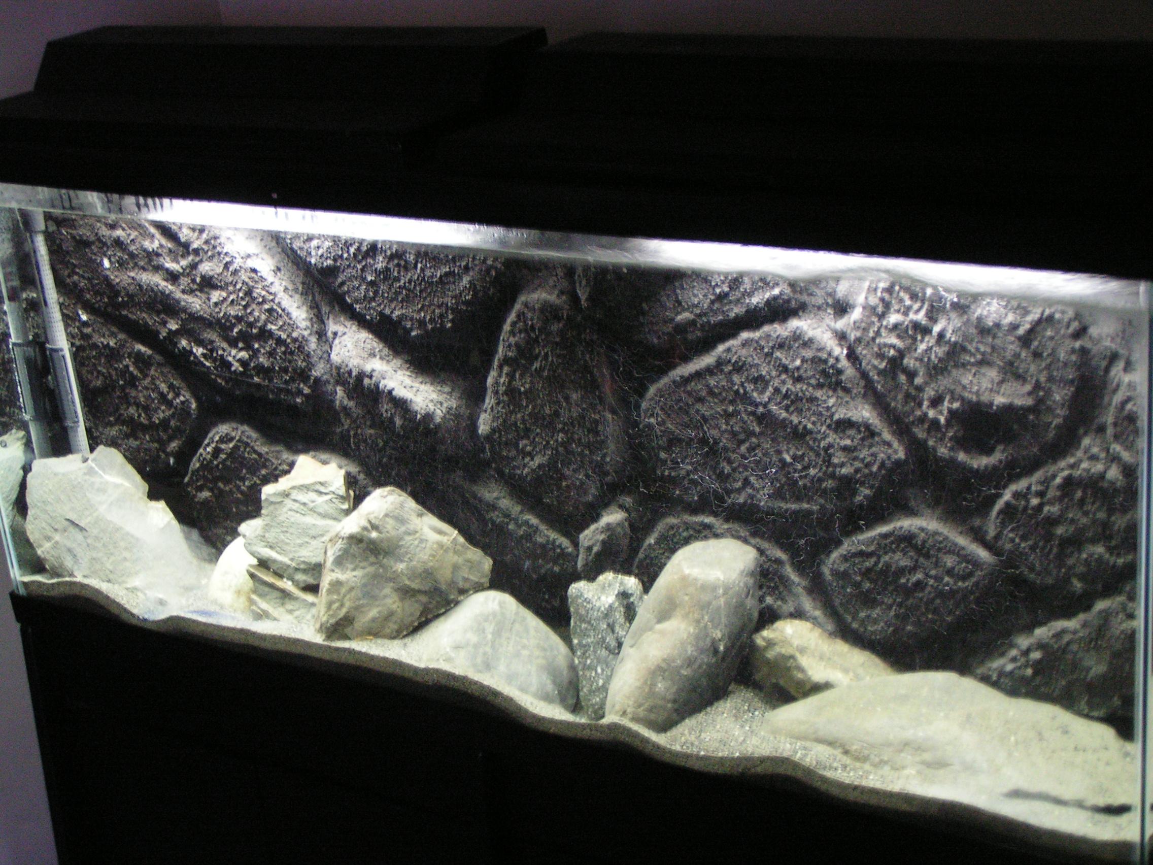 Aquarium fish in rock cave homedesignpictures for Fish tank caves