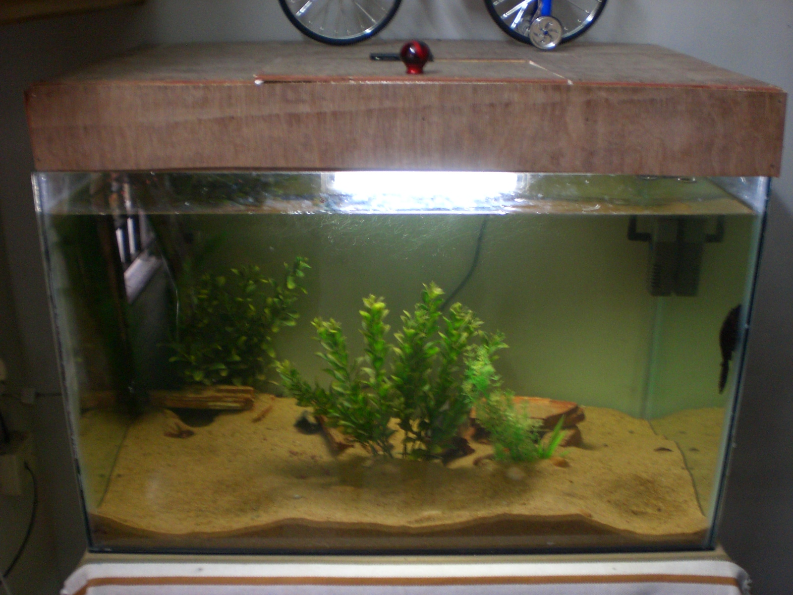 New fish tank models in chennai tank for New fish tank