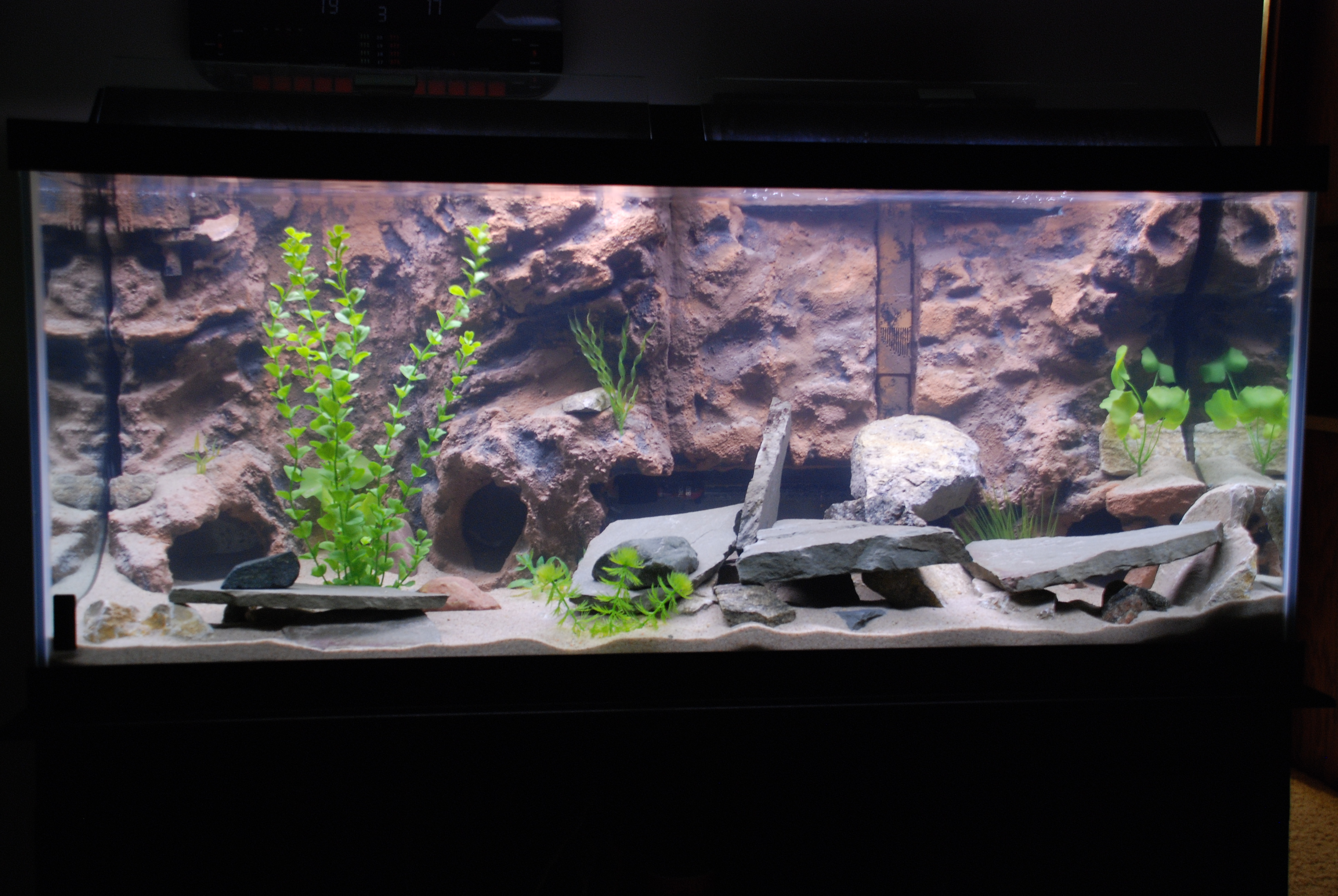 75 Gallon Aquarium Background Dramatic Aquascapes Diy