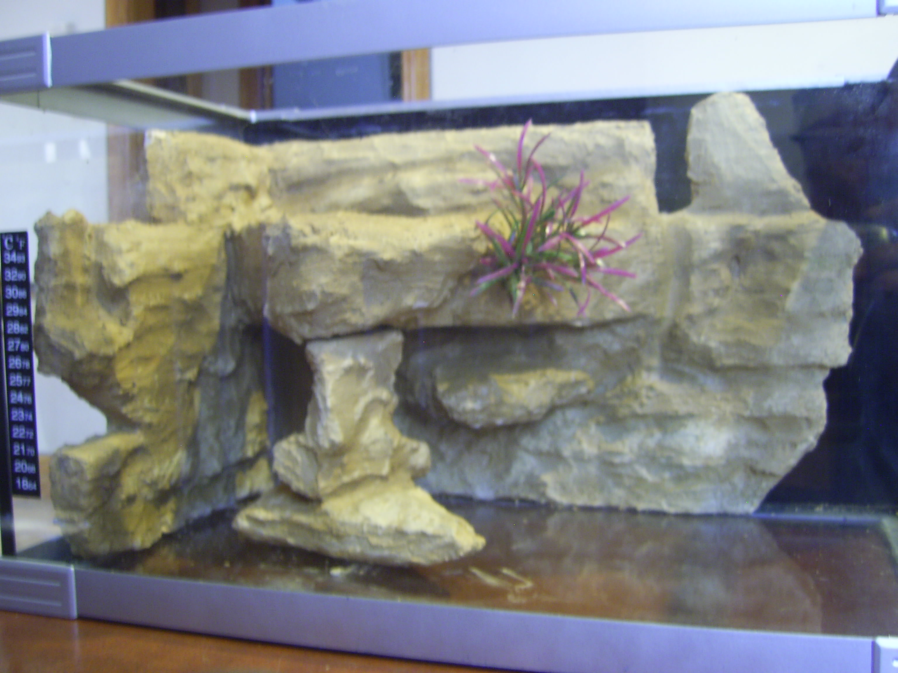 5 gallon fish tank background diy aquarium background
