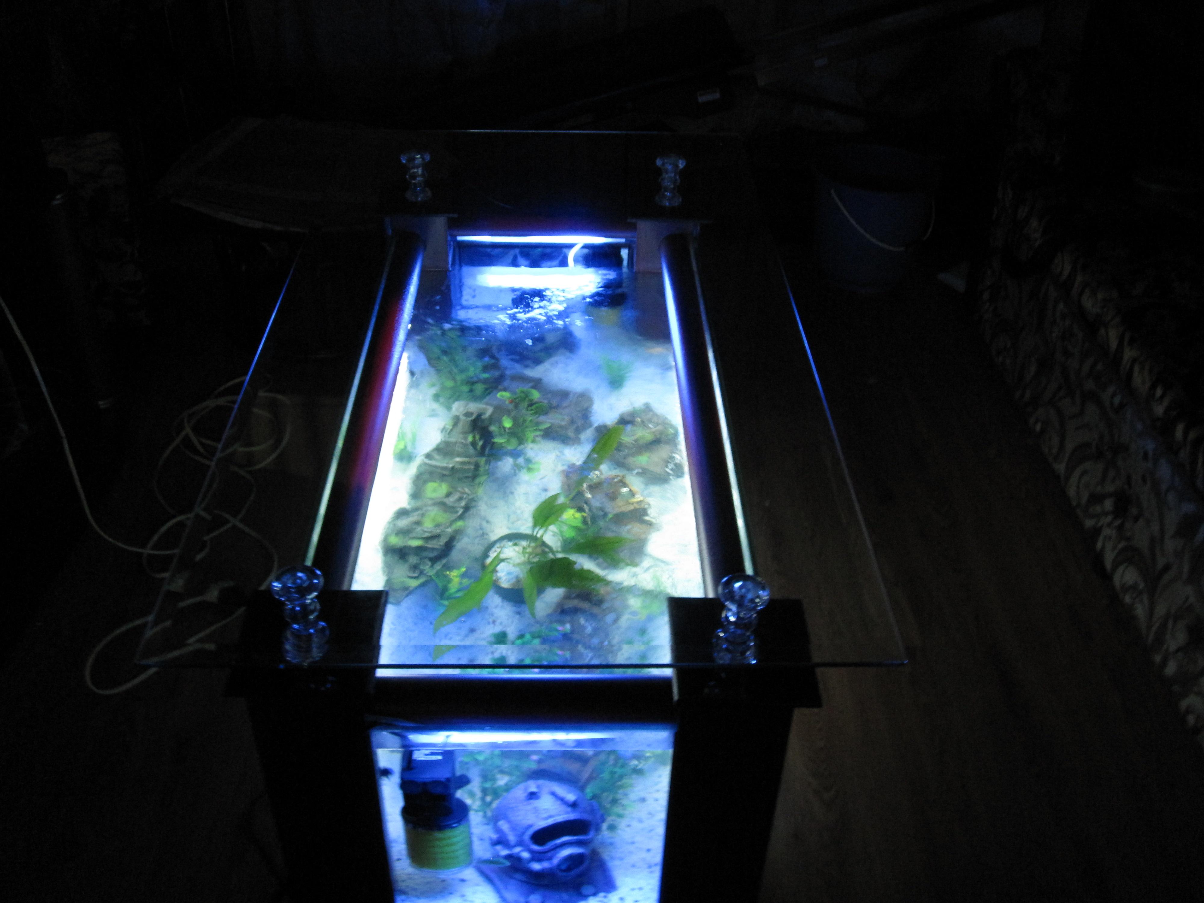Coffee table aquarium tumblr - Aquarium table ...