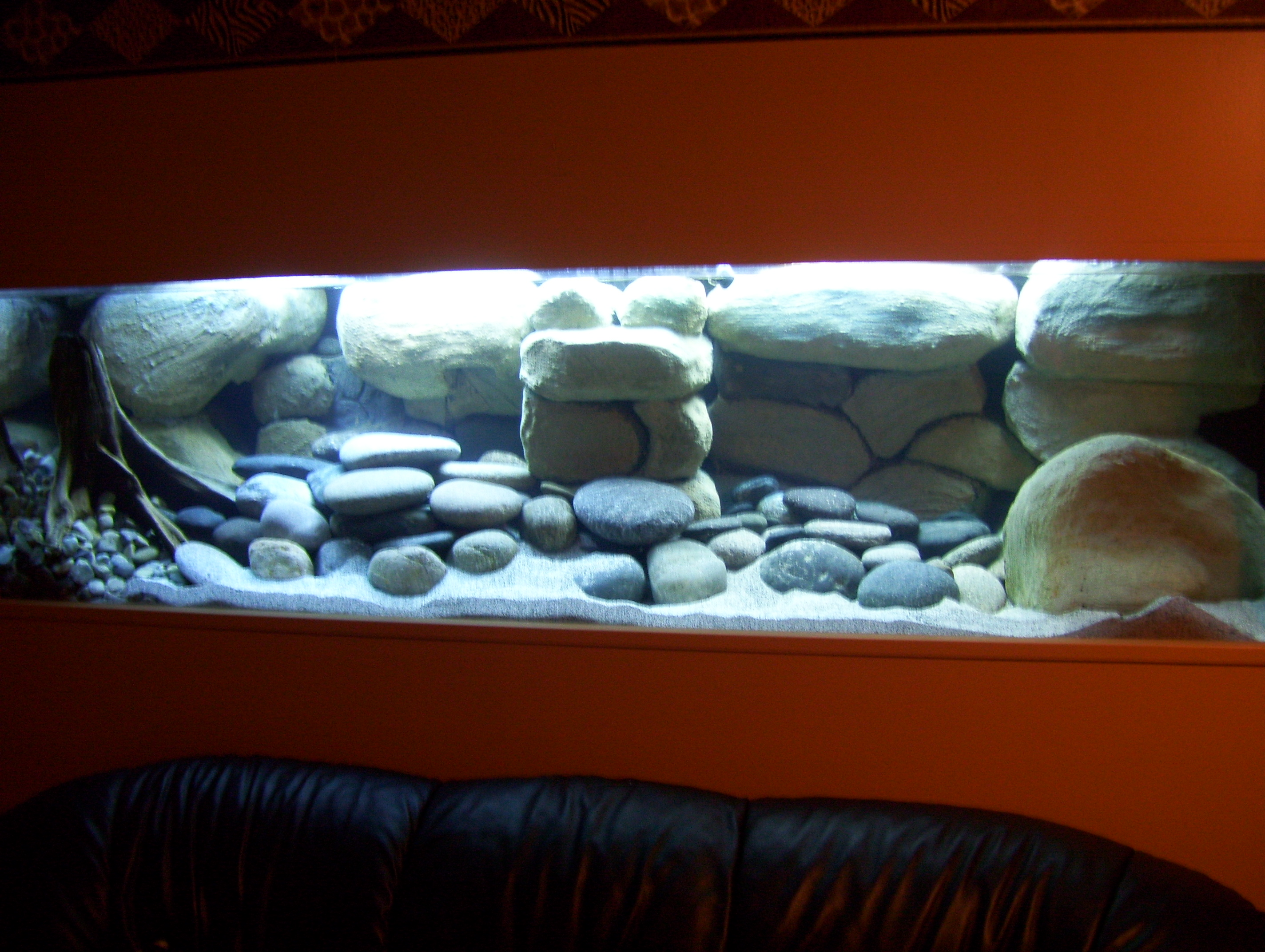 Tank examples 210 gallon newly set up tank for African cichlid rock decoration