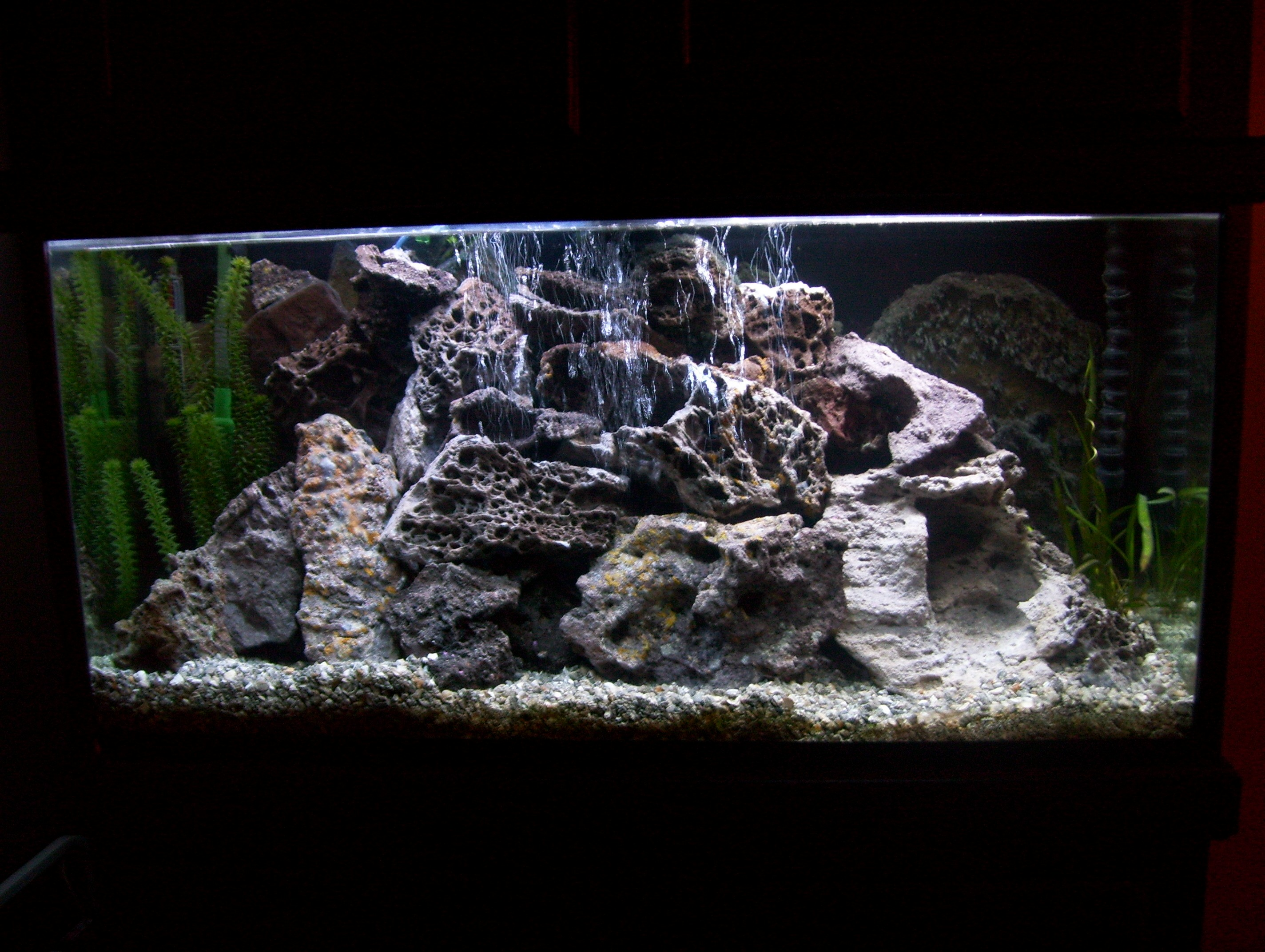 90 gallon mbuna tank with new lace rock for African cichlid rock decoration