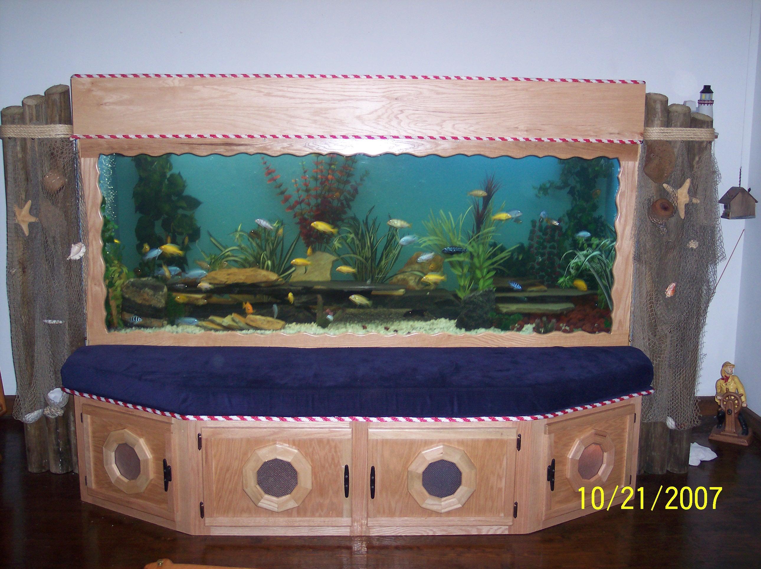 Coolest fish for freshwater aquarium - 25 Best Ideas About Big Fish Tanks On Pinterest Big Aquarium Amazing Fish Tanks And Tropical Fish Tanks
