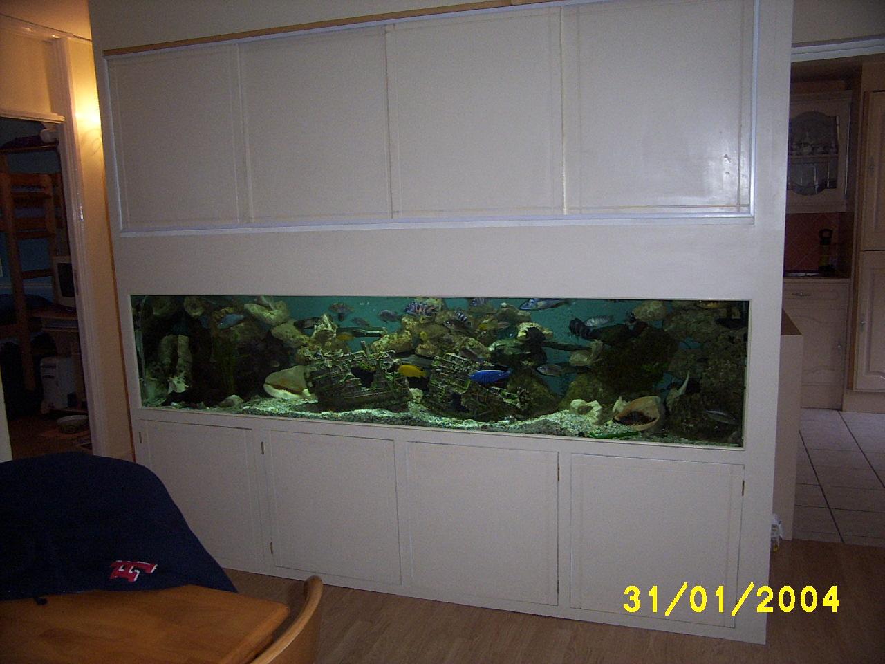 cichlids.com: macs 8 foot 200 gallon tank